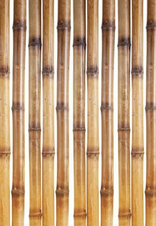 dry bamboo sticks isolated on white Stock Photo - 13689123