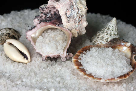 Sea Salt with shells close-up photo