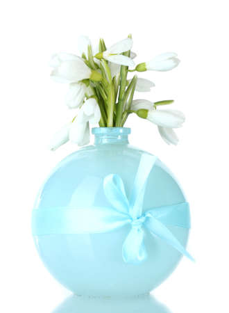 beautiful bouquet of snowdrops in blue vase isolated on white photo