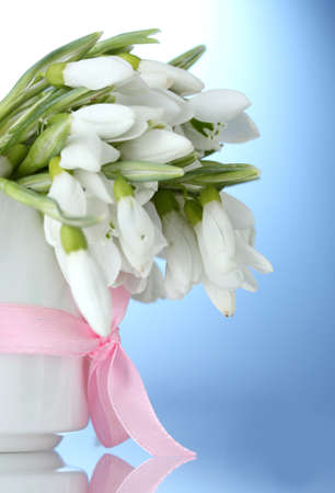 beautiful bouquet of snowdrops in vase with bow on blue background photo