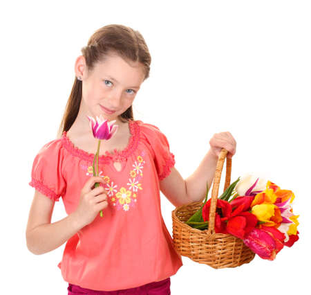 Portrait of beautiful little girl with tulips in basket isolated on white photo
