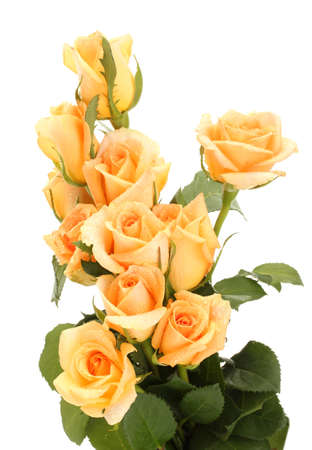 yellow rose: beautiful bouquet of roses isolated on white Stock Photo