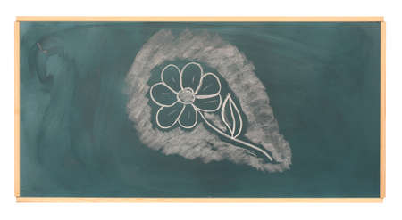 Blackboard with drawing flower isolated on white photo