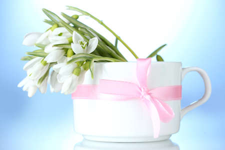 beautiful bouquet of snowdrops in vase with bow on blue background