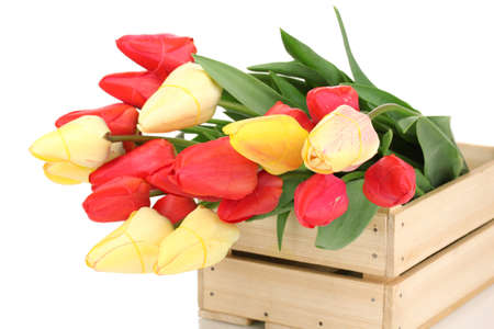Beautiful tulips in crate isolated on white