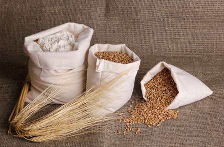 Flour and wheat grain on sackcloth Stock Photo - 14135164