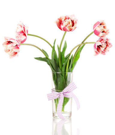 Beautiful tulips in vase isolated on white photo