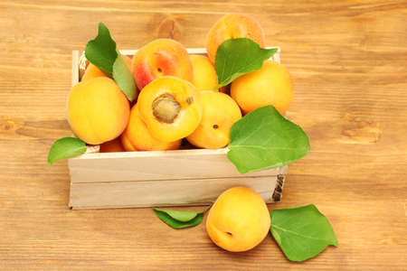 ripe apricots with green leaves in wooden box on wooden table photo