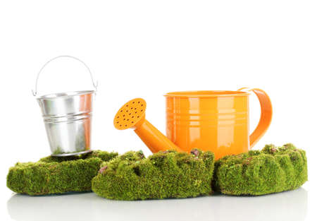 Green moss with watering can and metal bucket isolated on white photo