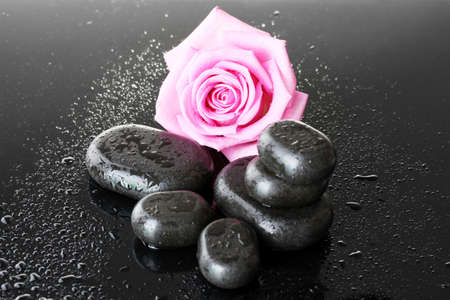 Spa stones with drops and pink rose on grey background photo