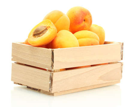 ripe apricots in wooden box isolated on white photo