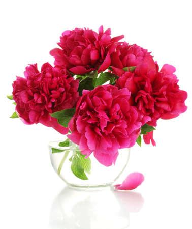flores de cumpleaños: hermosas peonías rosadas en florero de vidrio aislado en blanco Foto de archivo