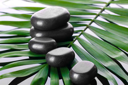 Spa stones on green palm leaf on grey background Stock Photo - 14117475