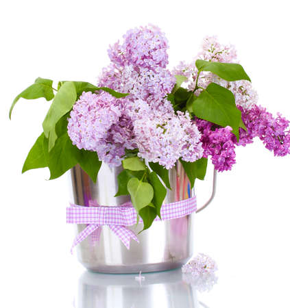 beautiful lilac flowers in metal bucket isolated on white Stock Photo - 14115003