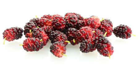 mulberry isolated on white background close-up photo