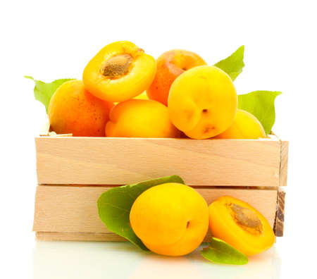 ripe apricots with green leaves in wooden box isolated on white Stock Photo - 14158150
