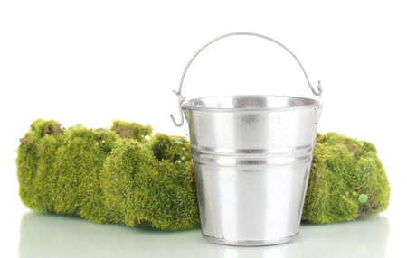 Green moss and metal bucket isolated on white photo