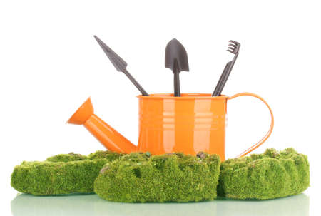 Green moss and watering can with gardening tools isolated on white photo