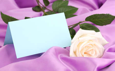 Beautiful rose on lilac cloth Stock Photo - 14163559