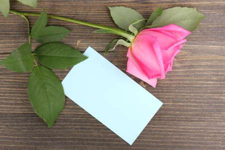 Beautiful rose on wooden background photo