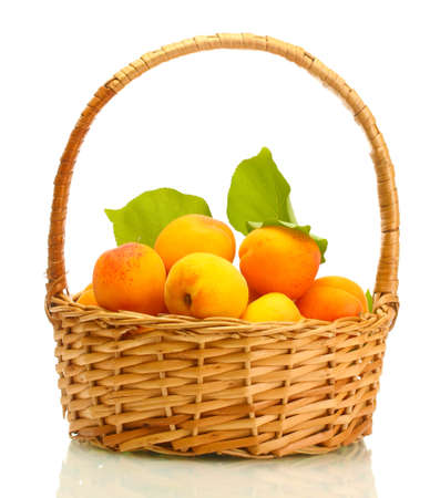 ripe apricots with green leaves in basket isolated on white photo
