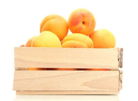 ripe apricots in wooden box isolated on white Stock Photo - 14163528