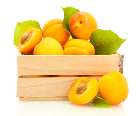 ripe apricots with green leaves in wooden box isolated on white Stock Photo - 14163511