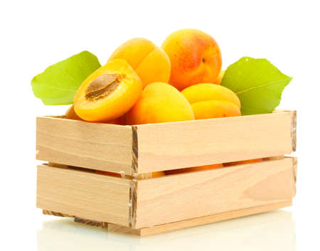 ripe apricots with green leaves in wooden box isolated on white Stock Photo - 14221115