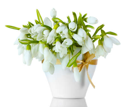 beautiful bouquet of snowdrops in vase with bow isolated on white photo