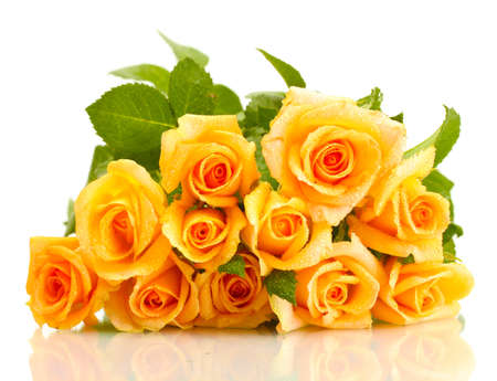 beautiful bouquet of roses isolated on white Stock Photo
