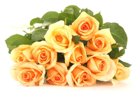 valentinas: beautiful bouquet of roses isolated on white Stock Photo