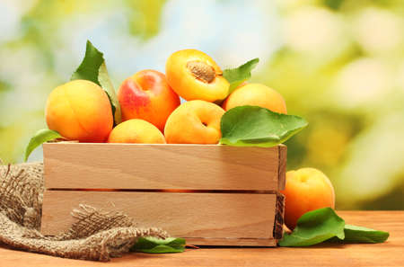 ripe apricots with leaves in wooden box on wooden table on green background Stock Photo - 14322224
