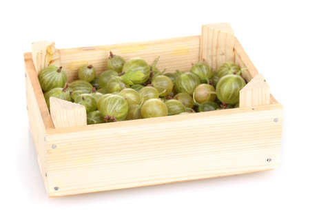 Green gooseberry in crate isolated on white photo