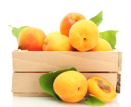 nutriments: ripe apricots with green leaves in wooden box isolated on white