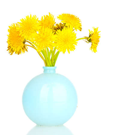 Dandelion flowers in vase isolated on white photo