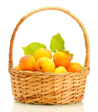 canasta de frutas: albaricoques maduros con hojas de color verde en la cesta aislada en blanco Foto de archivo