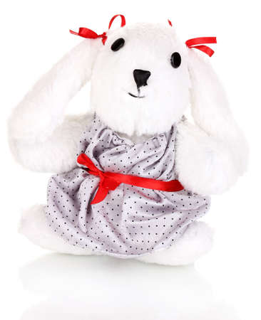 Toy bunny isolated on white photo