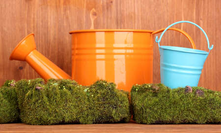 Green moss with watering can and metal bucket on wooden background photo