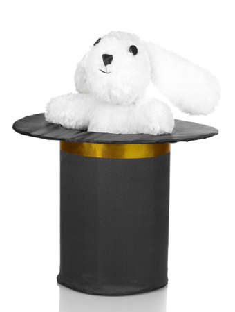 Bunny and black cylinder isolated on white photo