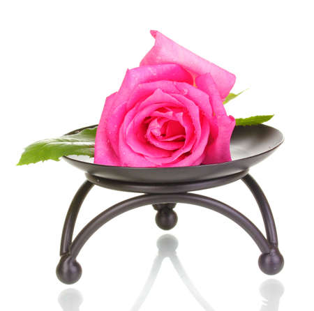 Beautiful rose on metal stand isolated on white photo