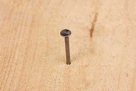 Metal nail in wooden plank Stock Photo - 14477830
