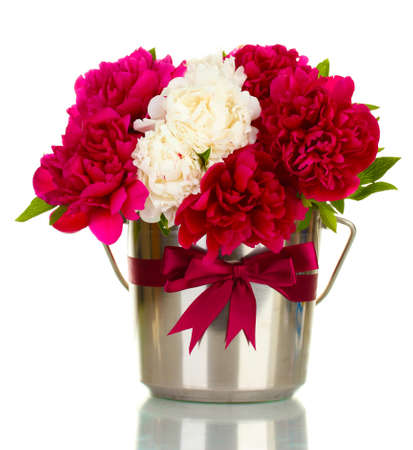 bunch up: beautiful pink and white peonies in bucket with bow isolated on white
