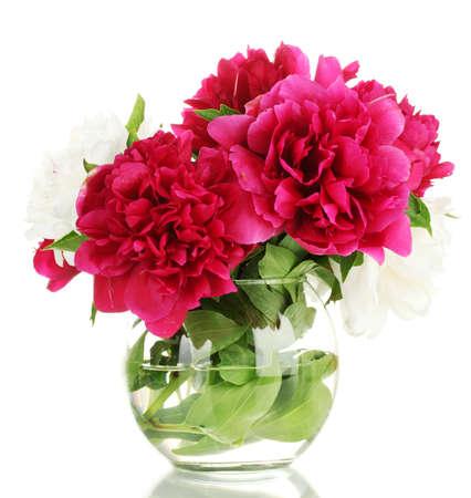 mooie roze pioenrozen in glazen vaas op wit wordt geïsoleerd