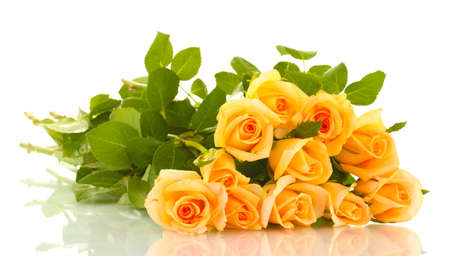 green yellow: beautiful bouquet of roses isolated on white Stock Photo