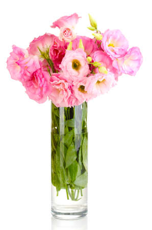 bouquet of eustoma flowers in vase, isolated on white photo