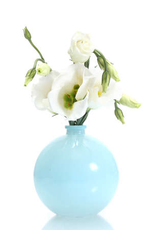 beautiful spring flowers in vase isolated on white photo
