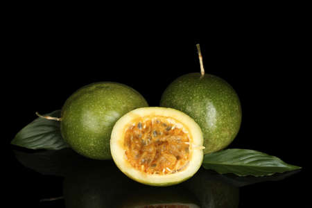 green passion fruit isolated on black photo