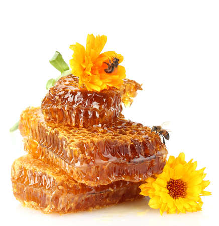 honey comb: sweet honeycomb with honey, bee and flowers, isolated on white Stock Photo