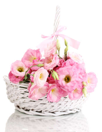 bouquet of eustoma flowers in basket, isolated on white photo