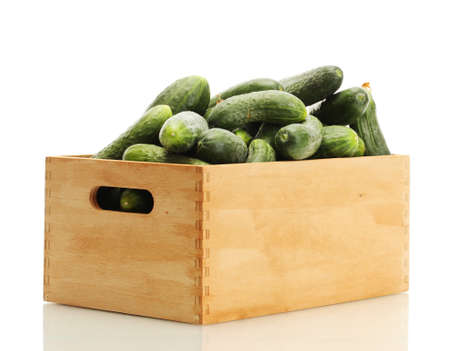 fresh cucumbers in wooden box isolated on white photo